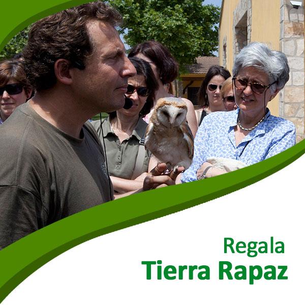 Bonos Tierra Rapaz
