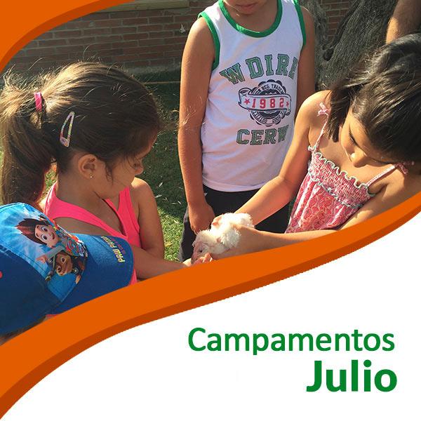 Campamentos Tierra Rapaz