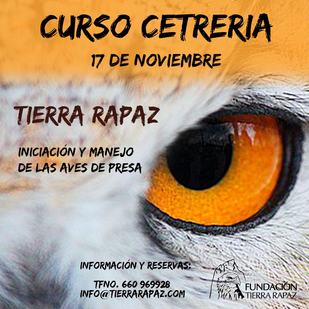 Curso de Cetrería Iniciación Tierra Rapaz