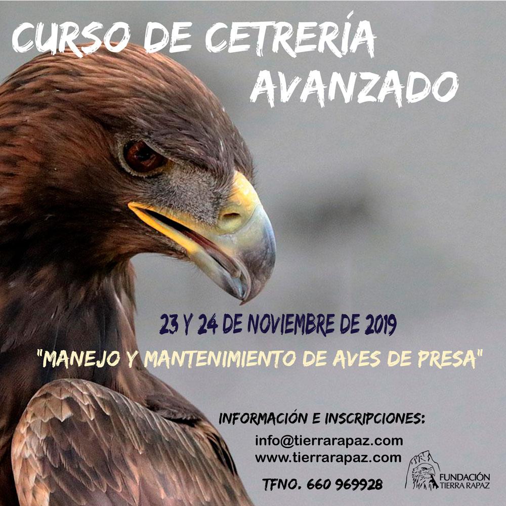 Curso de Cetrería avanzado Tierra Rapaz