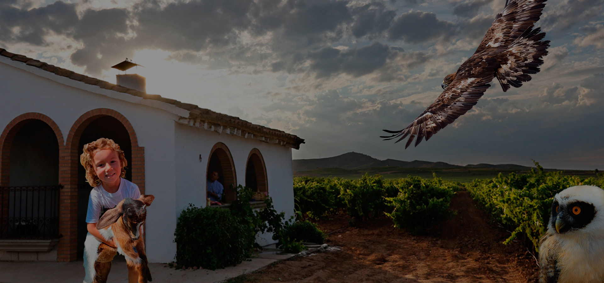 Fin de Semana en La Rioja con Cata Rapaz. Tierra Rapaz + Cata de Vino + Hotel