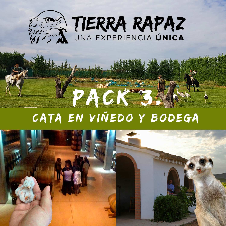 Pack Cata en Viñedo + Bodega