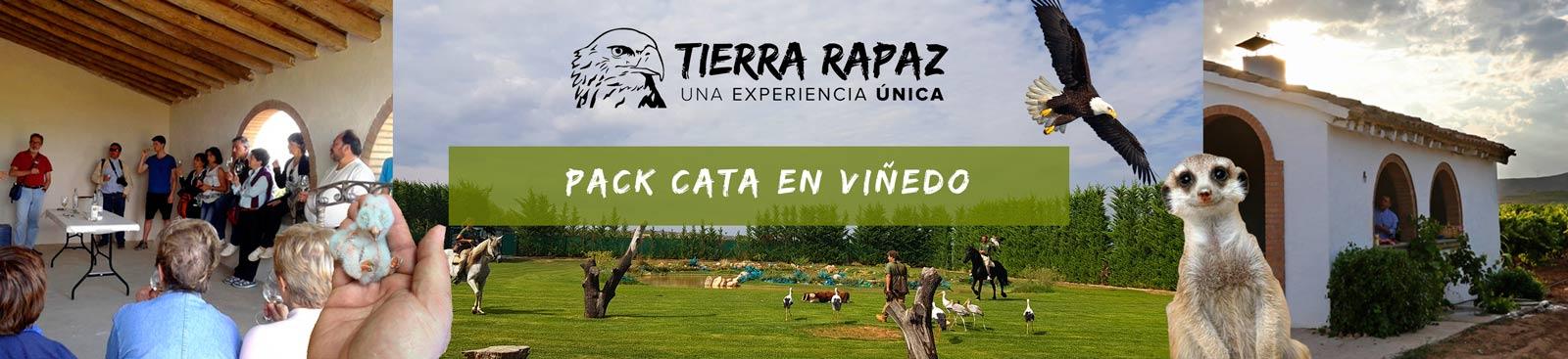 Packs Viñedo