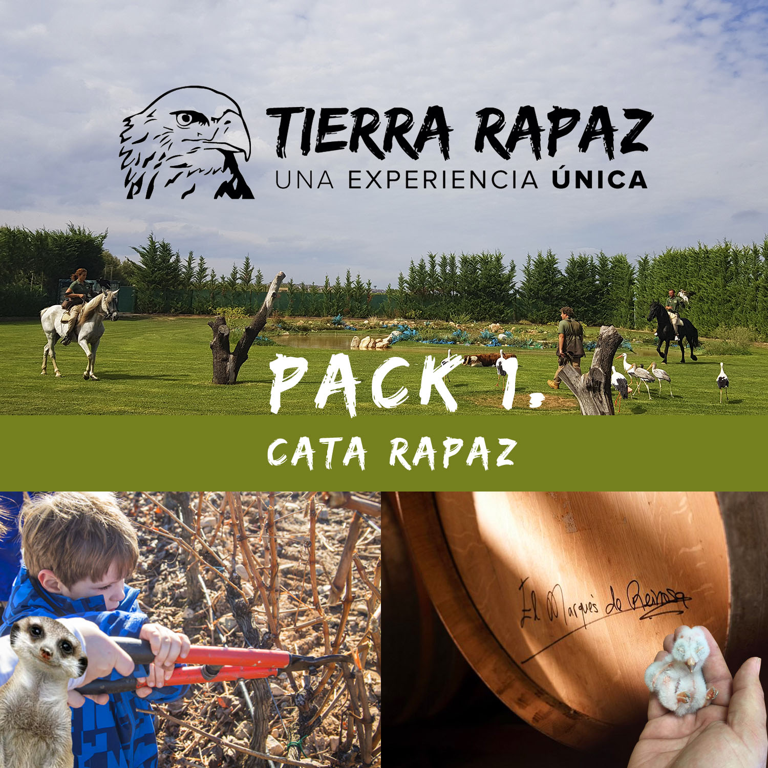 Pack Cata Rapaz