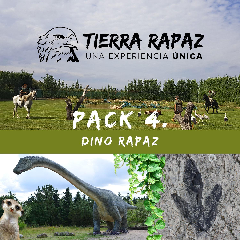 Pack Dino Rapaz